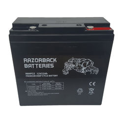 12v22Ah AGM Battery